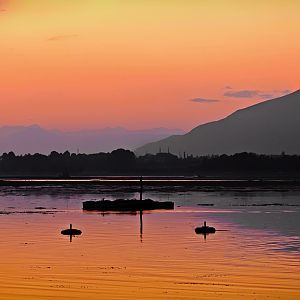 Twilight over Dal lake, Srinagar, India